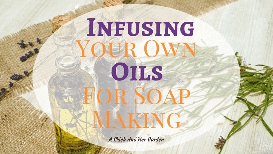Infusing Your Own Oils for Soap Making