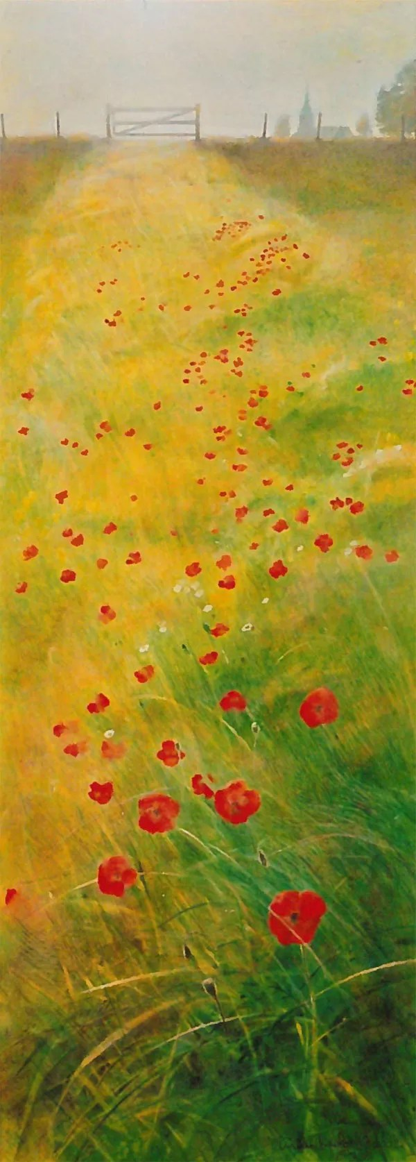 Poppies for Hannah