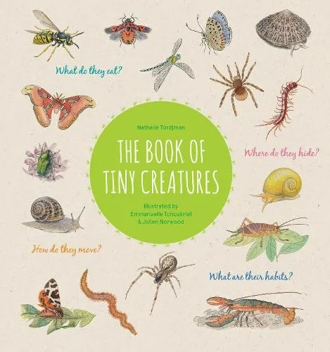 The Book of Tiny Creatures by Nathalie Tordjman ill. Julien Norwood & Emmanuelle Tchoukriel