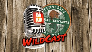 Tennessee WildCast logo