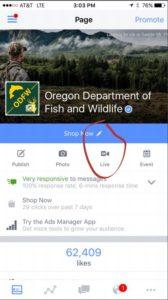screen shot of Oregon live-stream