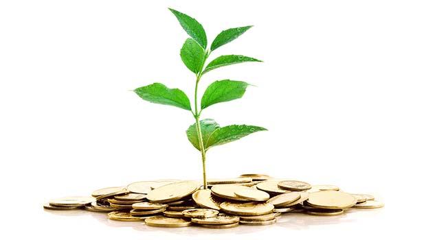 """""""Cultivar sua própria comida é como imprimir seu próprio dinheiro"""""""