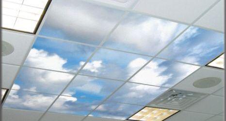 qué falsos techos me interesa colocar | acini | diseño e instalación