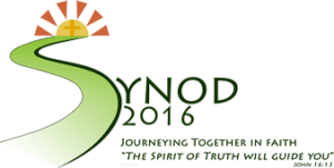 Logo for the Limerick Synod