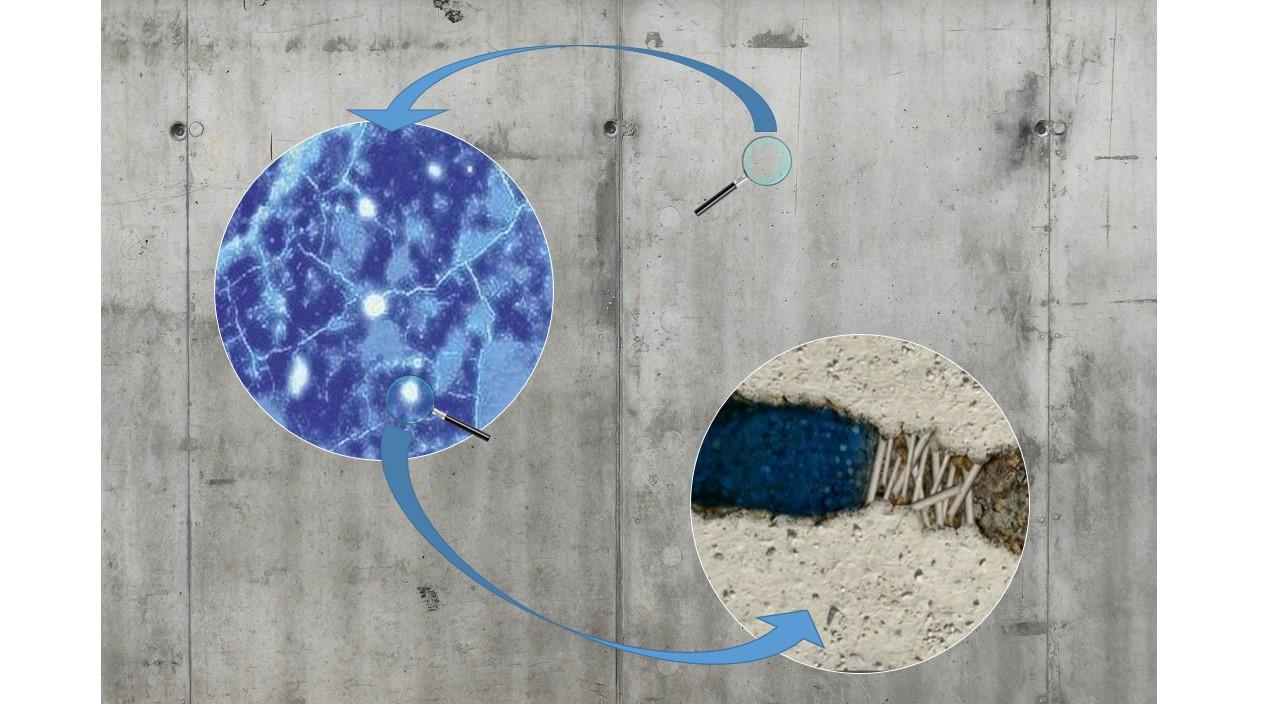 Proceso de la nanocritalización catalizada en el hormigón