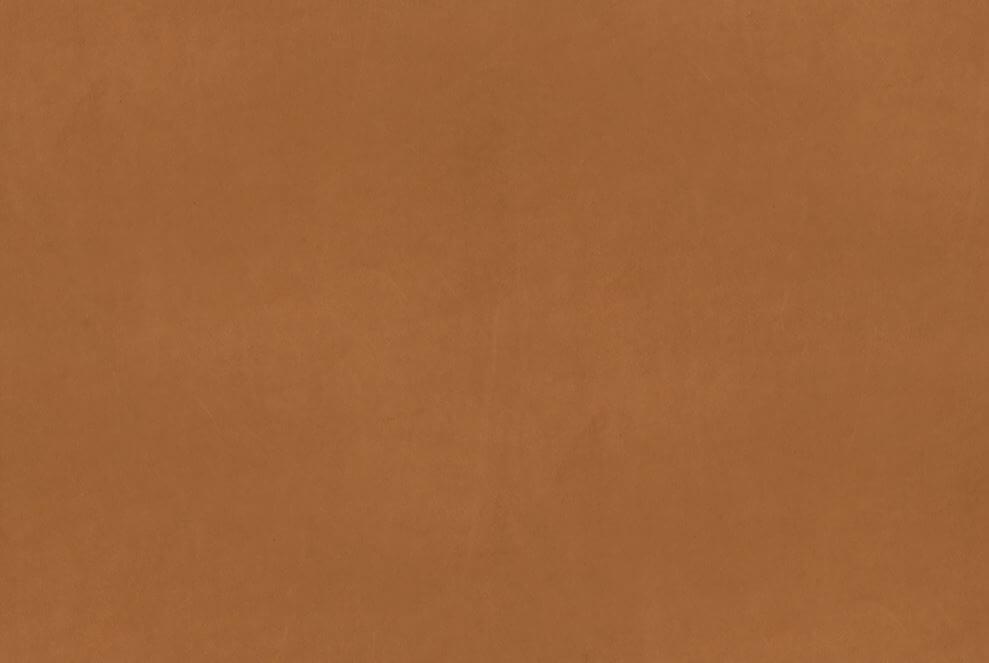 Vintage koža: Cognac 21000