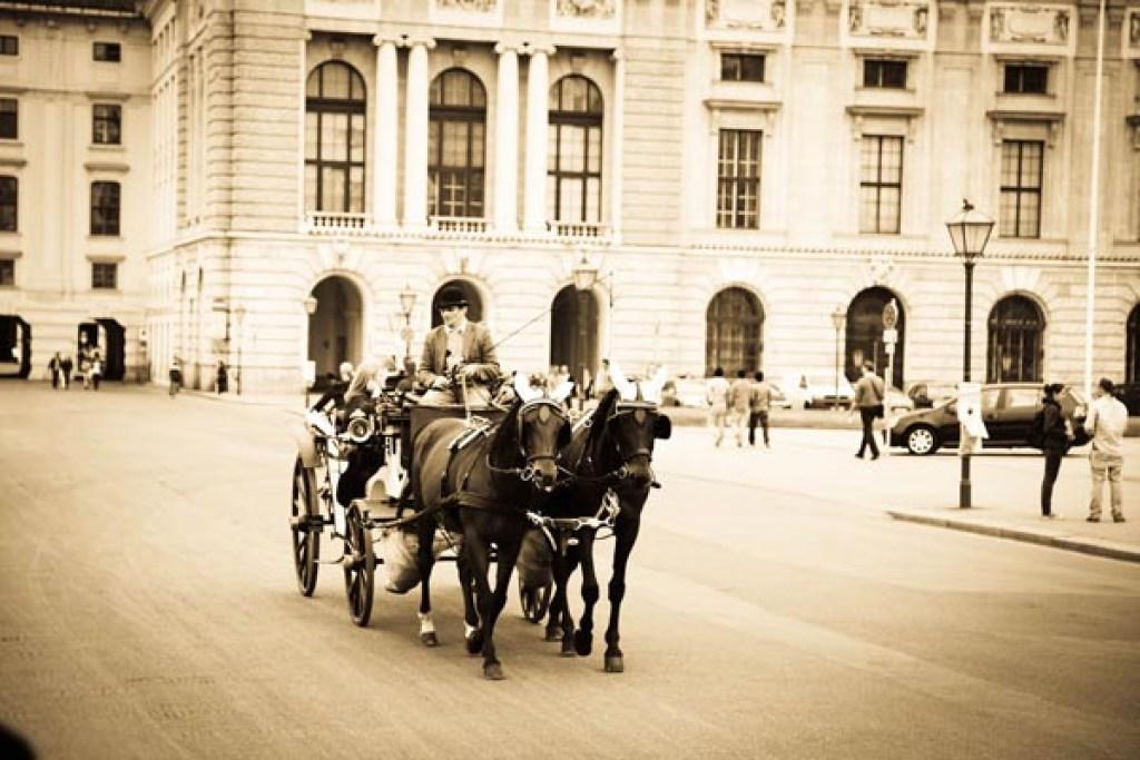Wien 2012-210