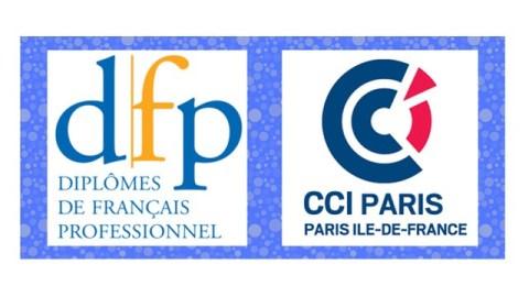 Logo_DFP_CCI_Paris_Ile_de_France (1)