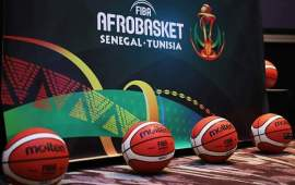 8 home based players dropped by D'Tigers