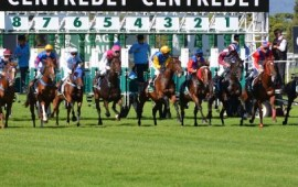 Most Favorable Horse Racing Contenders to Watch this Year