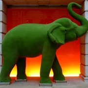 Politics and healthcare PR don't often mix, but sometimes you do have to talk about the elephant in the room.