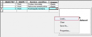 Cargar imagen a la tabla de atributos ArcGIS