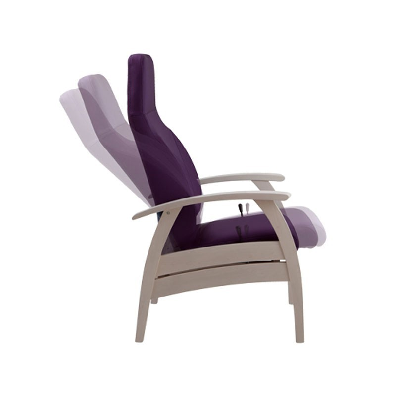 Fauteuil De Relaxation Elegance Dossier Inclinable
