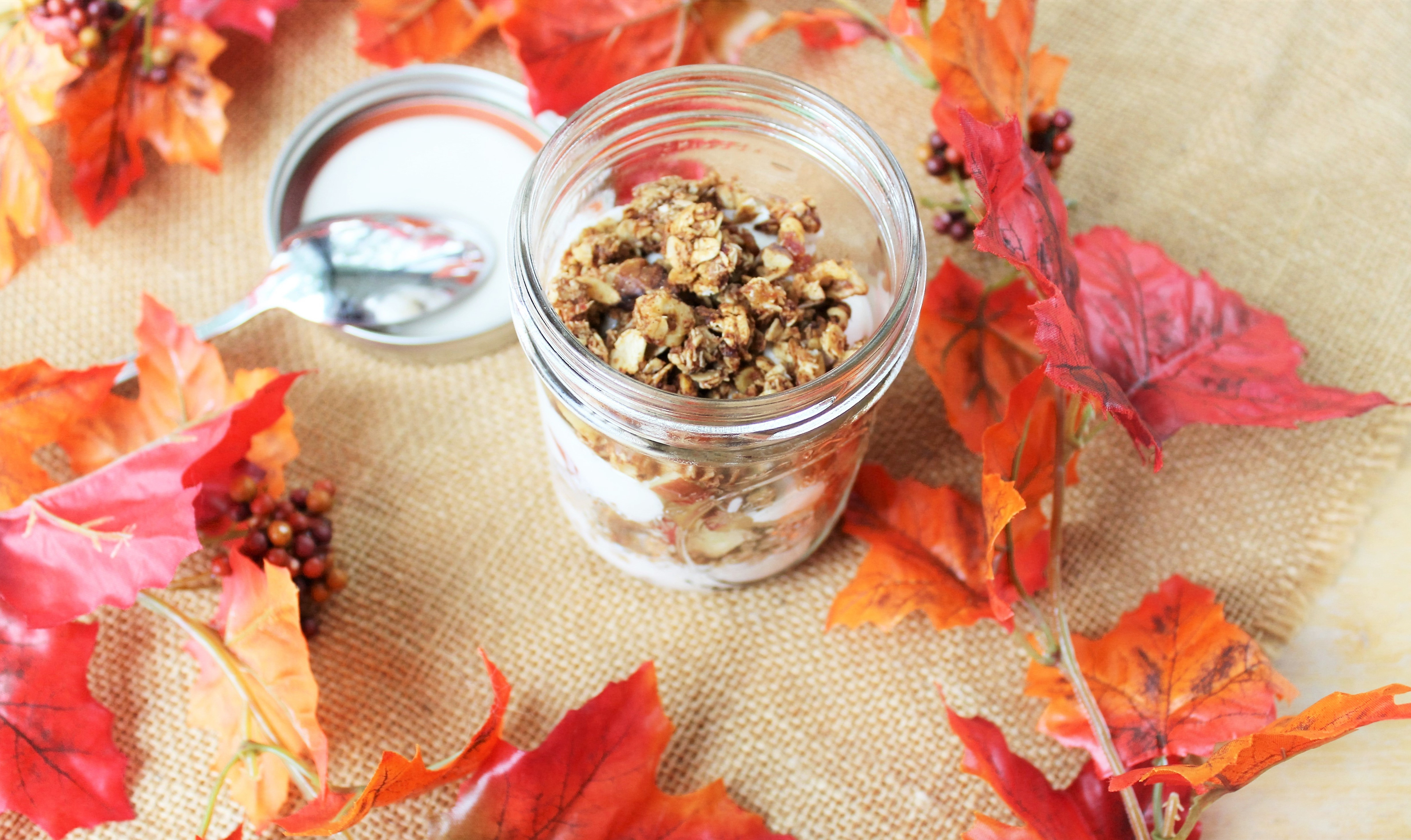 Yogurt Breakfast Parfait with Diced Apple and Homemade Cinnamon, Honey, and Walnut Granola 1
