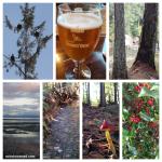 365 Project 2015 – week 44