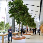 Immersive experience, retail, customer experience, community, Apple