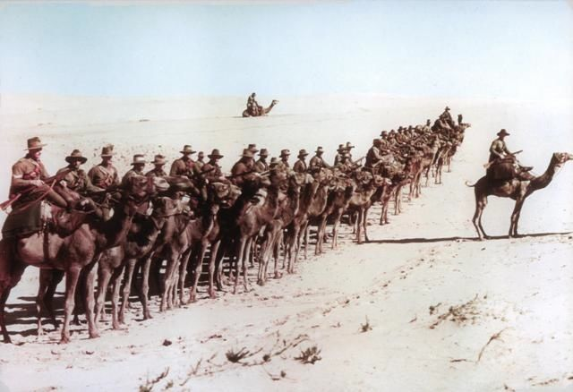 Company of Australians of the Imperial Camel Corps (ICC)