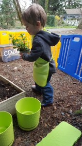 Teaching Toddlers How Things Grow and How to Plant a Garden. Gardening with Toddlers