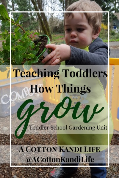 Teaching Toddlers How Things Grow with Gardening and Usborne Books