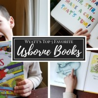 Wyatt's Favorite Usborne Books |3 Year Olds