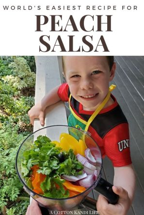 The World's Easiest Peach Salsa Recipe with only 5 Ingredients! After u-Pick Peach Picking in Oregon we had to find a good Summer Recipe with Peaches. This Peach Salsa Recipe is Kid Friendly for Kids who love to help in the kitchen. It took less than 5 Minutes and no tedious chopping