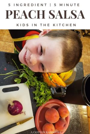 Salsa Kids can Make: The World's Easiest Peach Salsa Recipe with only 5 Ingredients! After u-Pick Peach Picking in Oregon we had to find a good Summer Recipe with Peaches. This Peach Salsa Recipe is Fast & Easy and Kid Friendly. It's also AMAZING on Tacos!