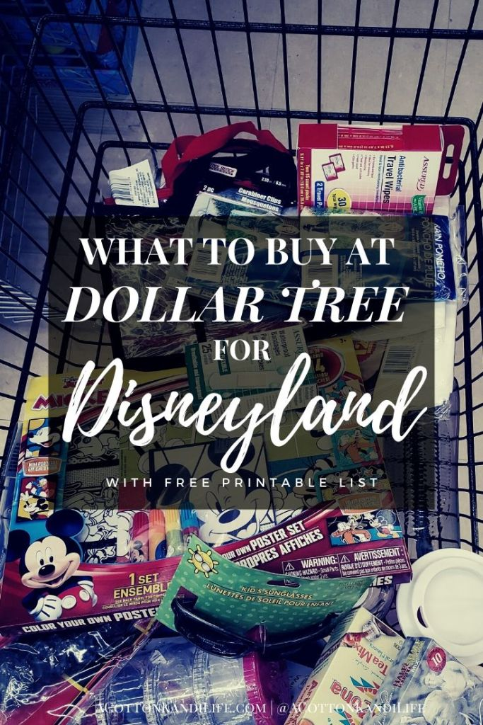 If you're heading to Disneyland with a Group save yourself some BIG BUCKS by buying supplies at the Dollar Tree before you go. Splash Mountain Ponchos cost $12 in the park so but one for a buck and take it with you. I've built a list of my top Dollar Tree for Disneyland purchases. From Shoe Insoles to Water bottles and lanyards.  * What to buy at Dollar Tree for Disneyland before you go. Disneyland planning with the Dollar Store. How to save money on your Disneyland vacation. Dollar Tree for Disney Trip Planning.