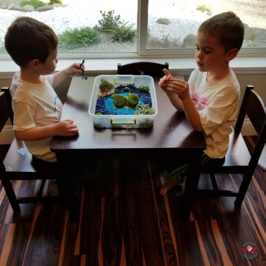 A little quiet time in the window for Sensory Play. April brings out all our bins for Snakes, Reptiles, Bugs and more. Follow these boys at the #ACKLTeachingTable for all the lesson plans.  . Shop all Sensory Bins Here: https://www.etsy.com/shop/CottonNKandi?ref=seller-platform-mcnav&section_id=19428979 . #cottonnkandi #etsyhandmade #etsysellersofinstagram #etsyfind #sensoryplay #sensorybinideas #sensorybin #discoverylearning #sensorytoys #playideas #learnthroughplay #learningthroughplay #toddleractivities #finemotorskills #invitationtoplay #playbasedlearning #montessoriinspired  #kidactivities #playmatters #earlylearning #preschoolactivities #letthemplay #playandlearn #sensory #creativitymatters #Creativityfound #earlychildhoodeducation #shopetsy #totschool