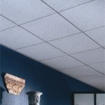 Ceiling Tile and Grid