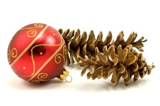 Ornament and pine cones