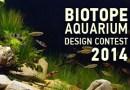Biotope Aquarium Design Contest 2014