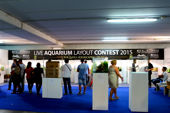 NaQ2015_2_ Layout contest