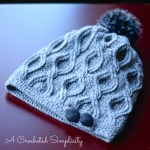 Hourglass Cabled Beanie & Slouch by A Crocheted Simplicity