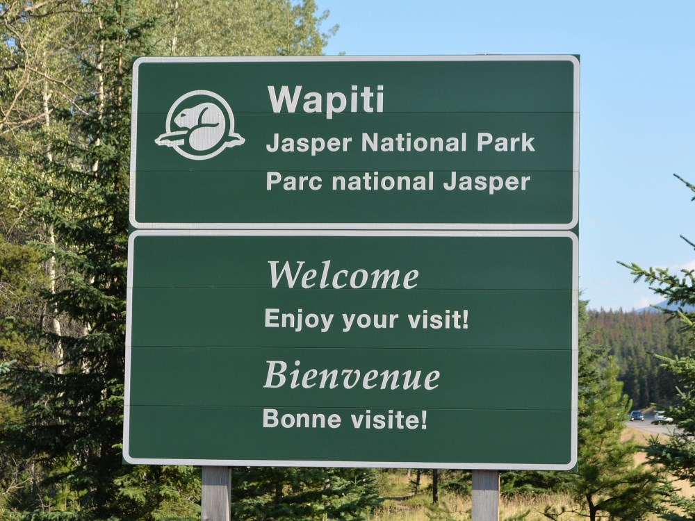 Wapiti Campground - Jasper National Park - review