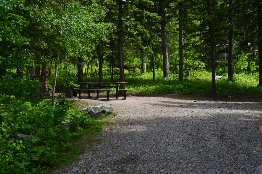 empty forested campsite with picnic table and firepit