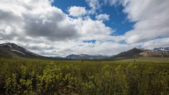 Wanderung durch den Tombstone Territorial Park.