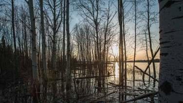 Sonnenuntergang am Lac Duparquet.