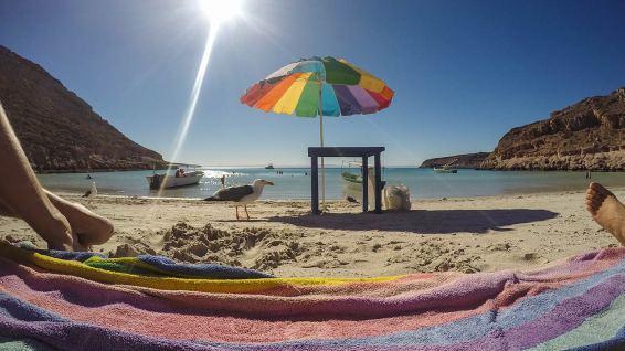 Isla Espiritu Santo: es folgt das Mittagessen nach dem Schnorcheln.