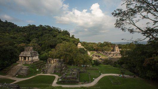 Blick über die Tempelanlage von Palenque.