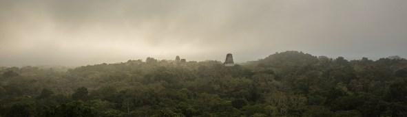 Den Sonnenaufgang in Tikal geniessen wir hoch oben auf der Snake-Pyramide.