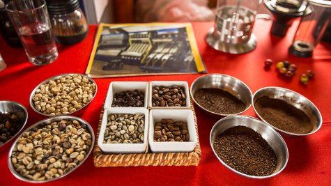 Interessante Kaffeetour in der Finca Guayabal.