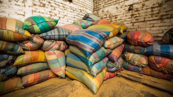 Nichts wird weggeworfen: Die Kaffeehüllen werden als Brennmaterial bei der Trocknung verwendet.