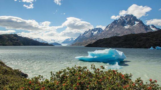 Vom Winde verweht: Eisberge treiben im Lago Grey.