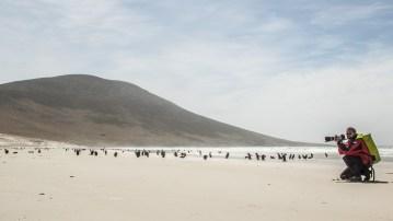 Am weissen Strand herrscht Hochbetrieb.