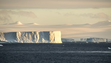 Sie schiffen sich elegant zwischen den riesigen Tabloid-Eisbergen durch.