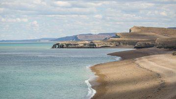 Keine Steine: die kleinen Punkte am Strand sind tausende Pinguine.