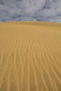 Wer möchte, kann Sandboarden.