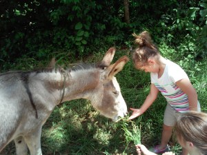 Daughter_Feeding_Burro_Outside_Our_House