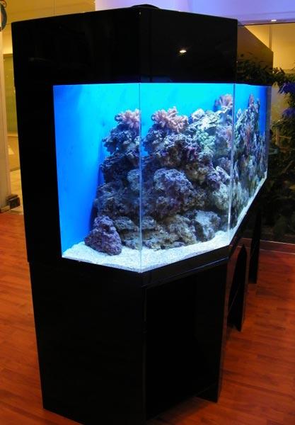 acrylic-fish-tank-013
