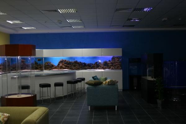 acrylic-fish-tank-019
